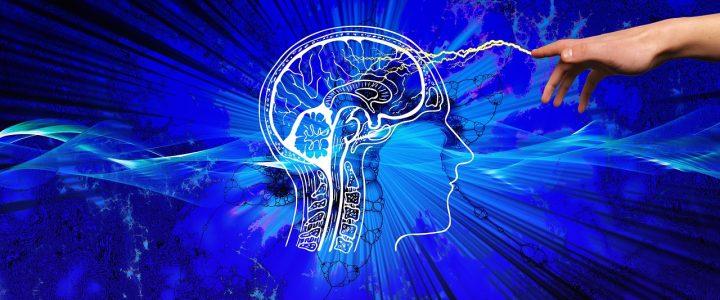 La plasticité cérébrale permet-elle d'expliquer et de renverser l'autisme ?