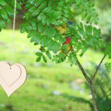 TDAH: comprendre et favoriser l'estime de soi