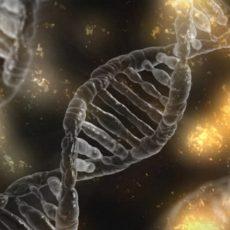 Le dépistage génétique en autisme : vers l'eugénisme ?